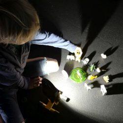 LABA Kreative Kindercamps in Wien www.labacamps.at_049