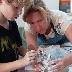 LABA Kreative Kindercamps in Wien_15